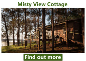 Misty view cottage